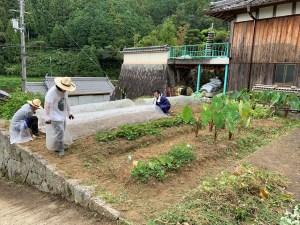 雑草を刈り取ってきれいになった自然農法の畑