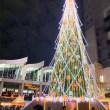 ドイツ・クリスマスマーケット 大阪 2019 のツリー