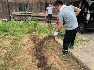 畝に寝かせておいた雑草堆肥を敷き込みます