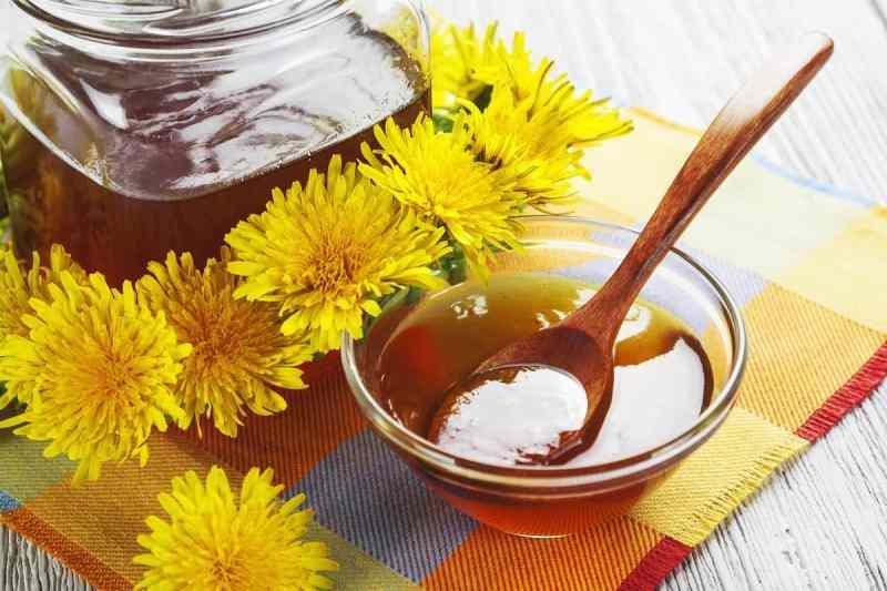 мёд из одуванчиков в домашних условиях