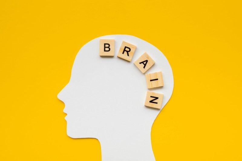 как тренировать память и внимательность