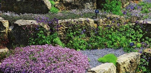цветники и клумбы из камней