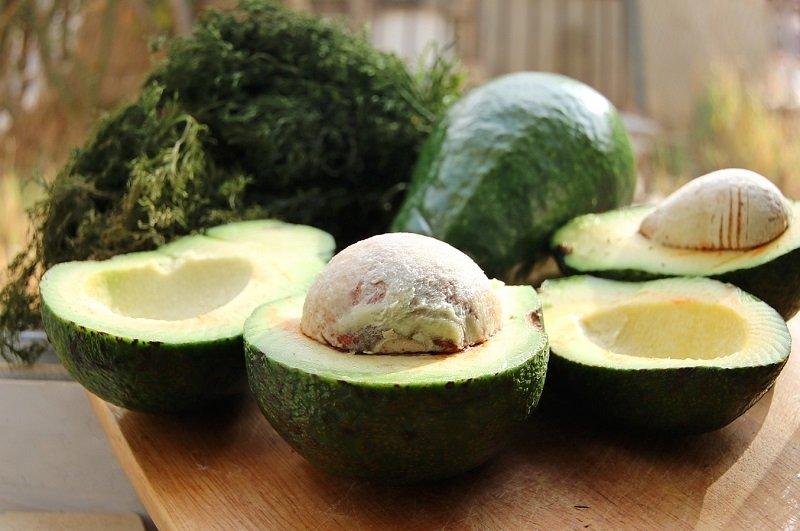 косточка авокадо применение