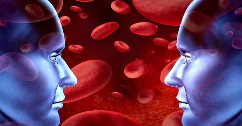 Неужели первая группа крови самая плохая? Исследователи утверждают, что…