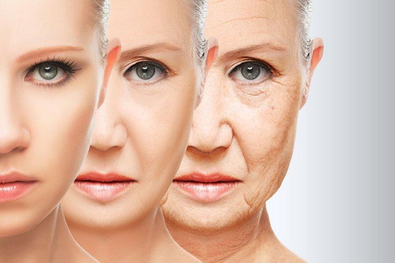 этапы старения