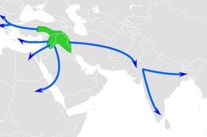 کاشتکاری کا طریقہ بارہ ہزار سال پہلے ترکی، شام اور ایران کے علاقوں سے شروع ہوا اور نو ہزار سال پہلے تک پوری دنیا میں پھیل گیا