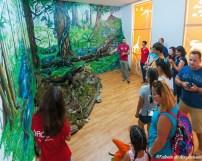 Geoparc Hateg - Centrul din orașul Hațeg, cu expoziția Balauri, Dragoni, Dinozauri
