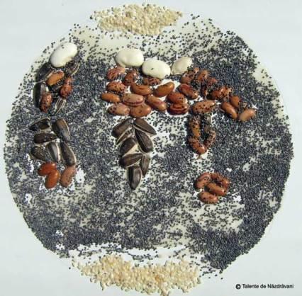 Colaje din semințe, materiale din natură