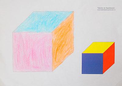 Cub desenat în perspectivă
