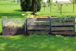 compost-419261
