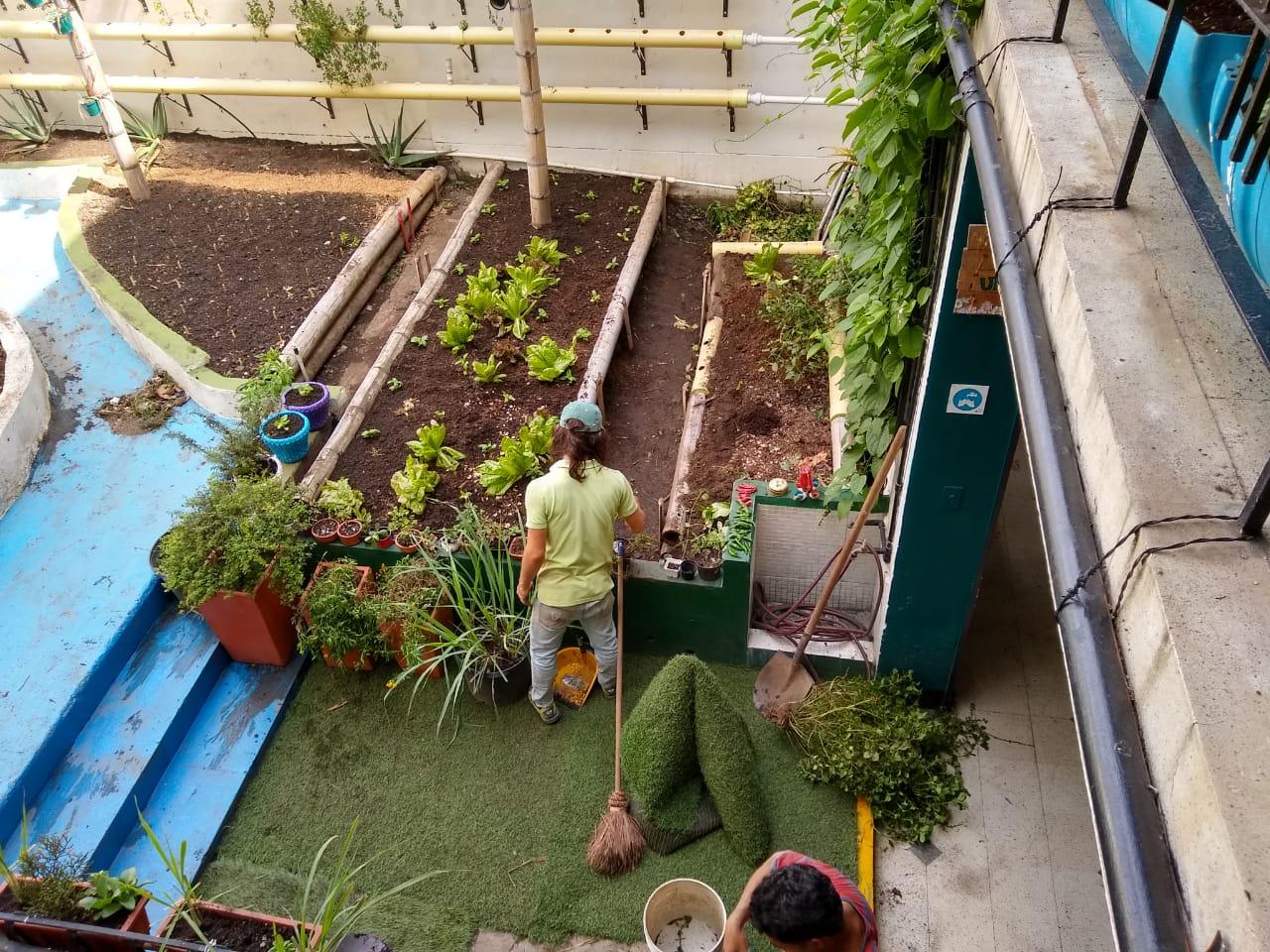 Agricultor urbano