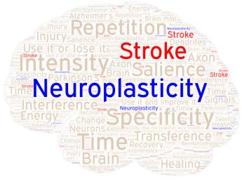 Neuroplasticity Word Art