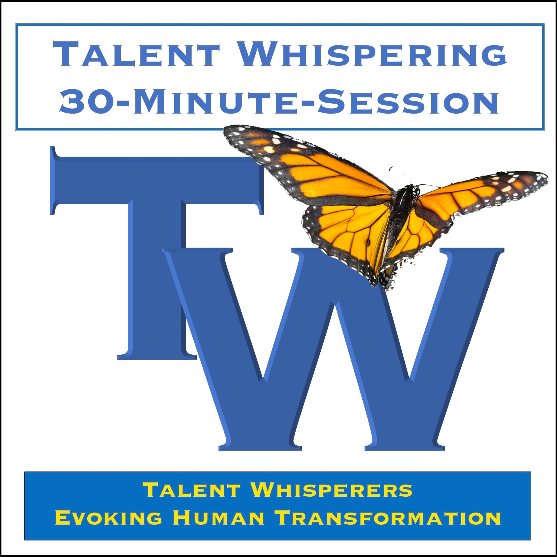 Talent-Whispering-30-minute-session