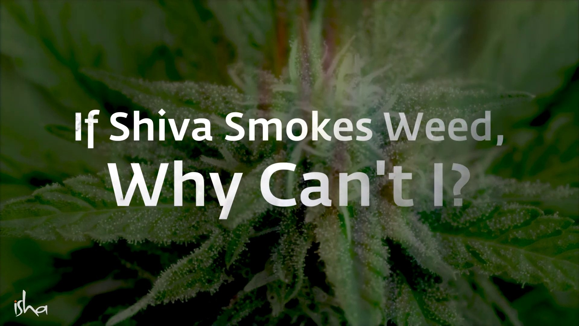 If Shiva Can Smoke Weed Why Can T I Sadhguru Ll Explain The Difference