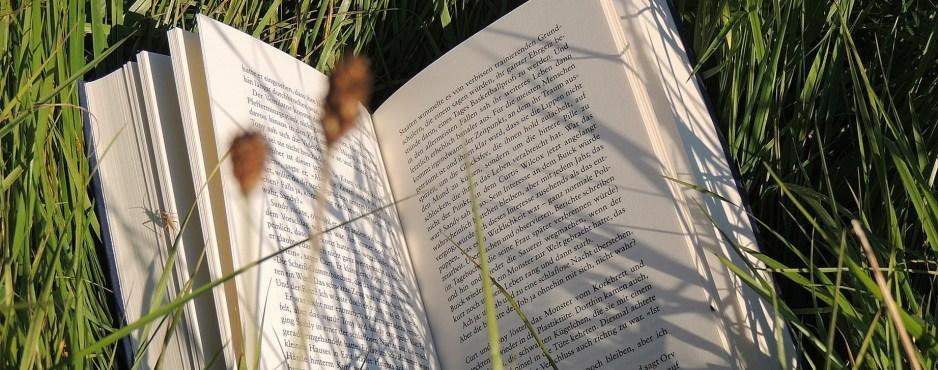 Lese-Liebe - Pleasant Beginning