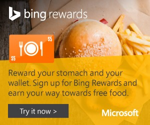 300x250_Bing_Banner_Ad_Food