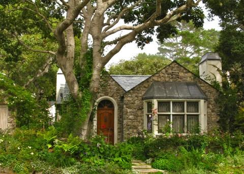Biddlestone Garden
