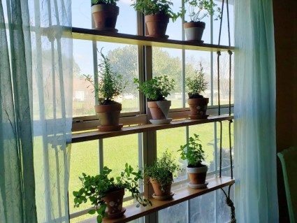 Hanging Herb Garden a simple DIY project that can breath life into your home!