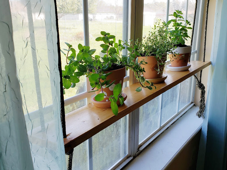 hanging herb garden a simple DIY project from the Home Depot