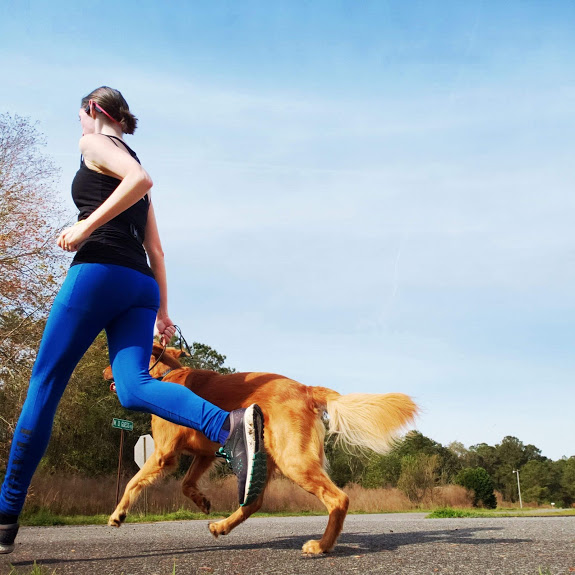 A women and dog running together for a speed workout.