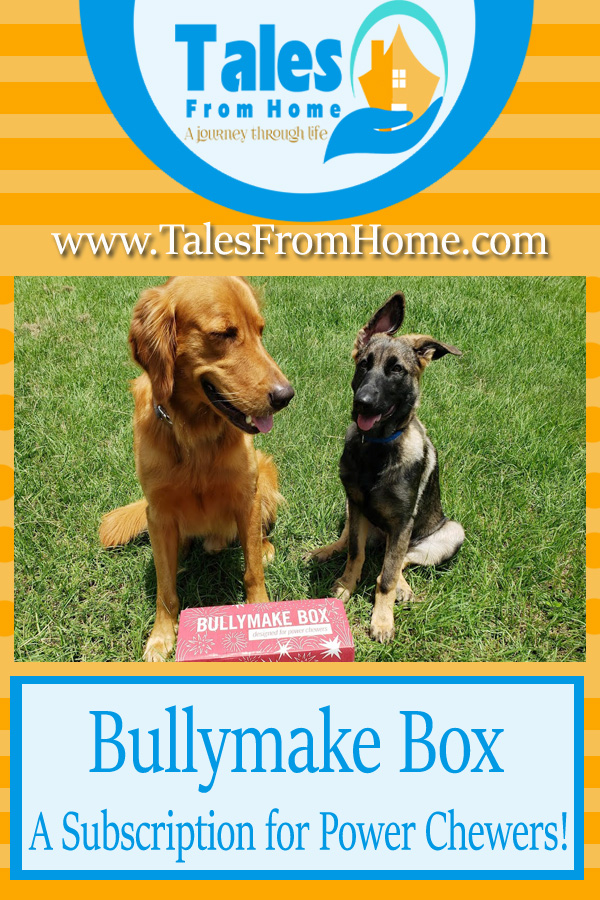Bullymake Box, a Dog Subscription box for power chewers and toy destroyers! #pets #familypets #dogs #puppy #goodboy