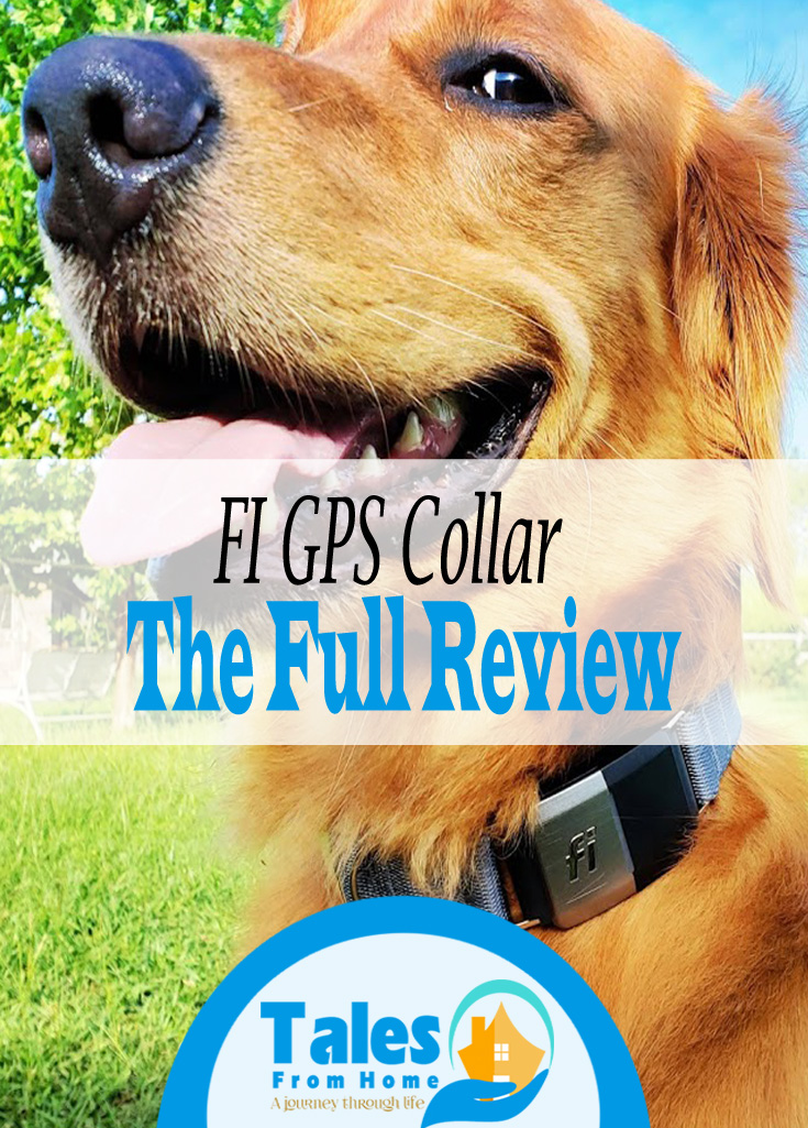 The Fi GPS Collar, a Great tool for Dog Owners! #dogs #puppy #puppies #pets #family #familypets #goldenretriever