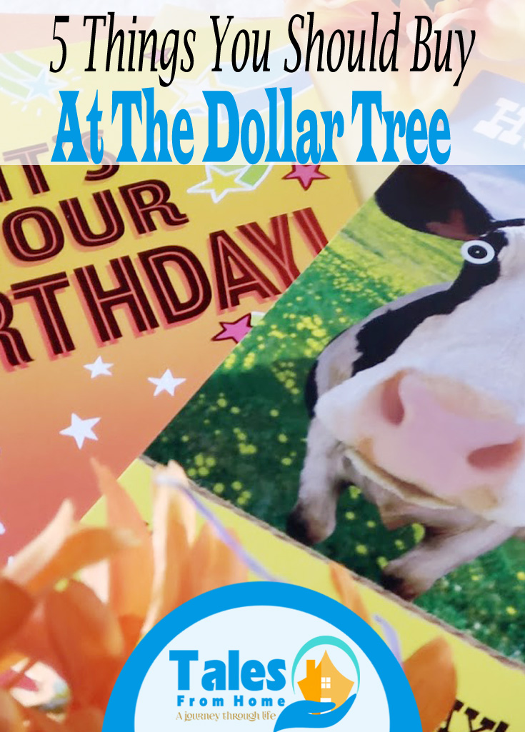 Things you should be buying at the Dollar Store #Dollartree #dollarStore #budget #family