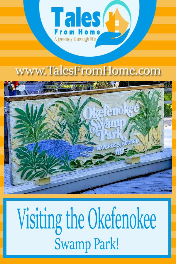 Visiting the Okefenokee Swamp Park #travel #family #familyfun #SouthGeorgia #Okefenokee #swamp #nature