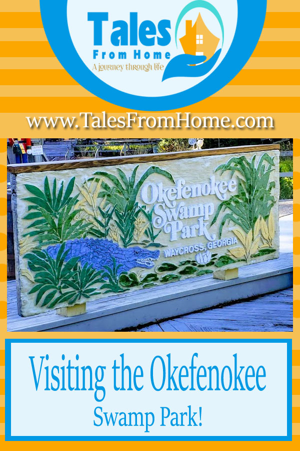 Visiting the Okefenokee Swamp Park #travel #family  #familyfun #SouthGeorgia #Okefenokee #swamp #nature