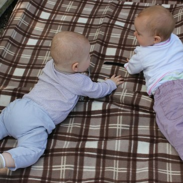 Nino Nino Nino: Baby Banter and Toddler Tattle