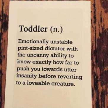 10 things only a toddler can do!