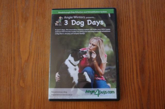 3 Dog Days training video