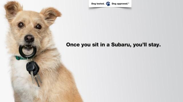 Subaru, Puppy Bowl