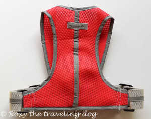 My canine kids harness review