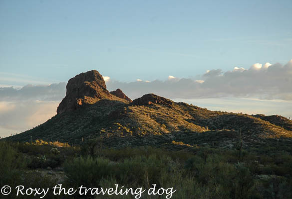 Wickenburg desert photos,vulture peak,desert