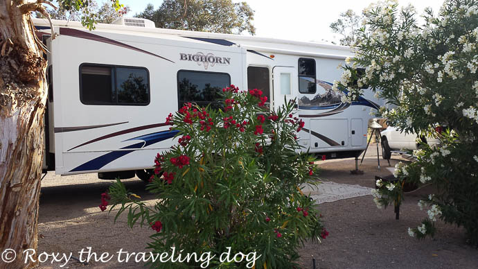 We stayed in a great campground in Lake Las Vegas
