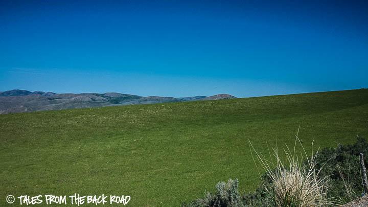A nice big green empty field