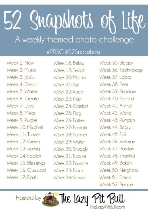 52 Snapshots of Life-large