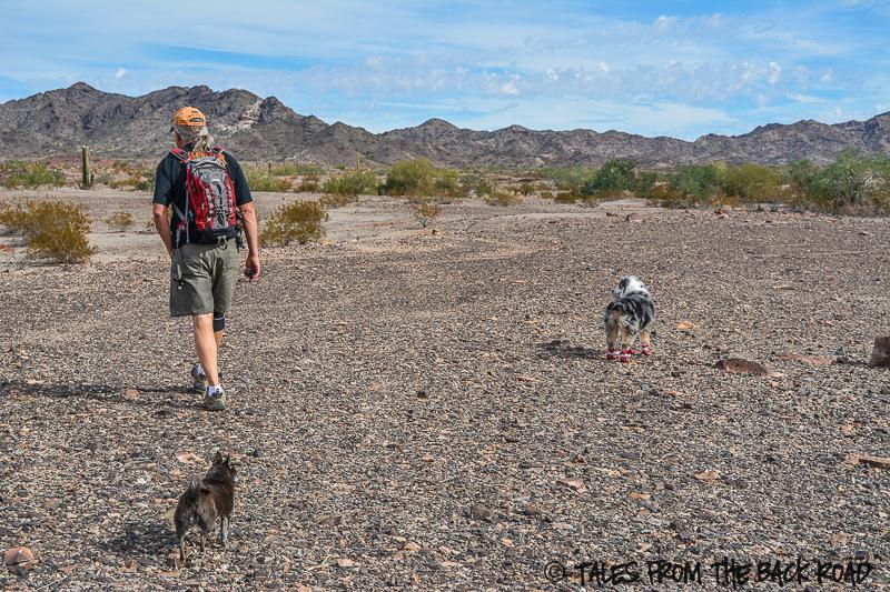 Quartzsite, Arizona Back to our favorite desert spot
