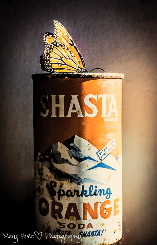 Vintage Shasta can - ABFriday