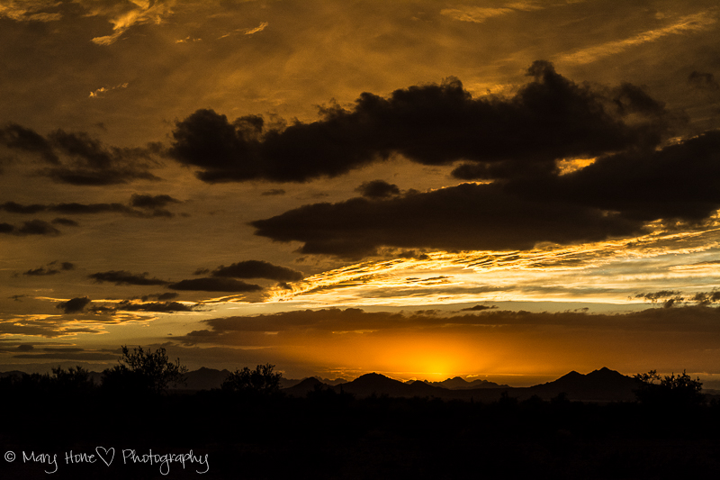 Golden sunset in Arizona