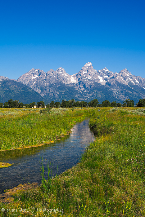 The Tetons of Wyoming