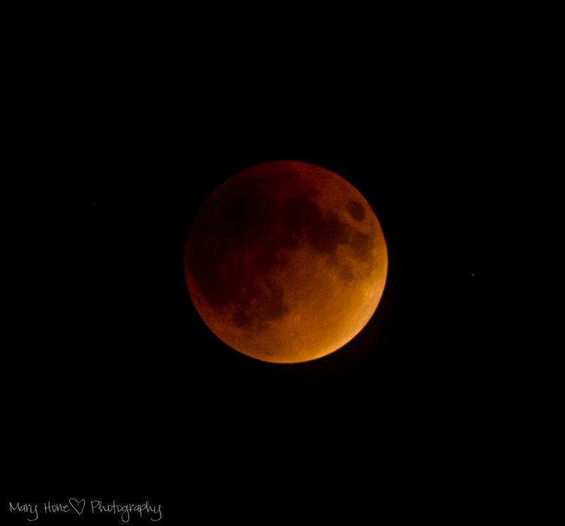 Super moon, lunar eclipse, blood moon