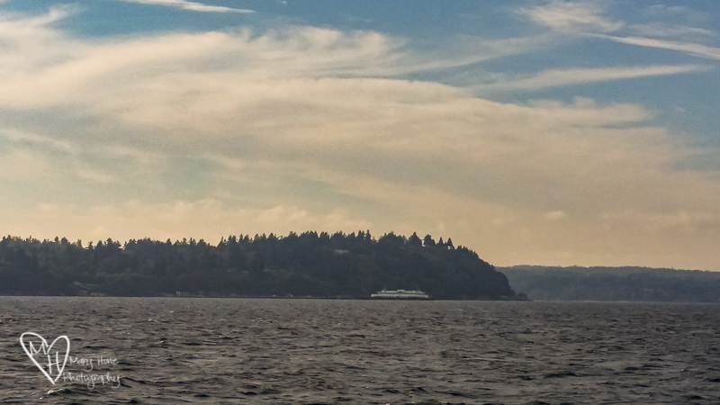 We got voted onto the island. Vashon ferry ride