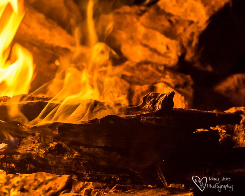 campfire night in the desert