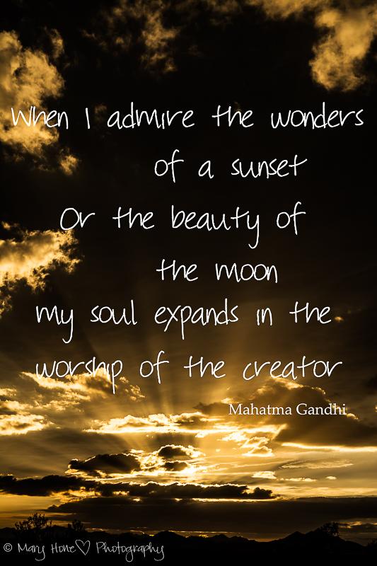 Admire the sunset