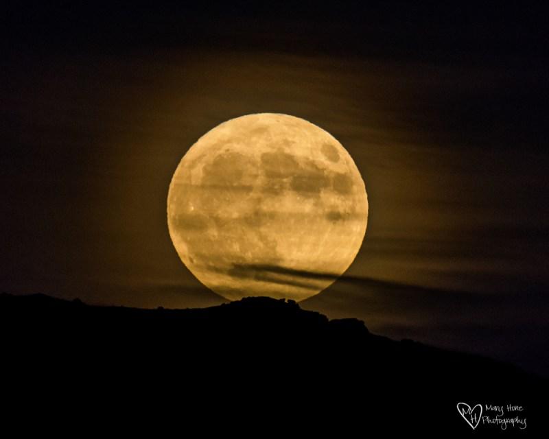 Hunters Moon 2016