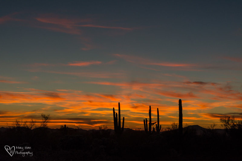 Give Me Solitude desert sunset
