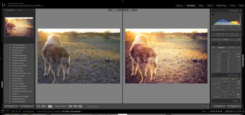 split toning photographs