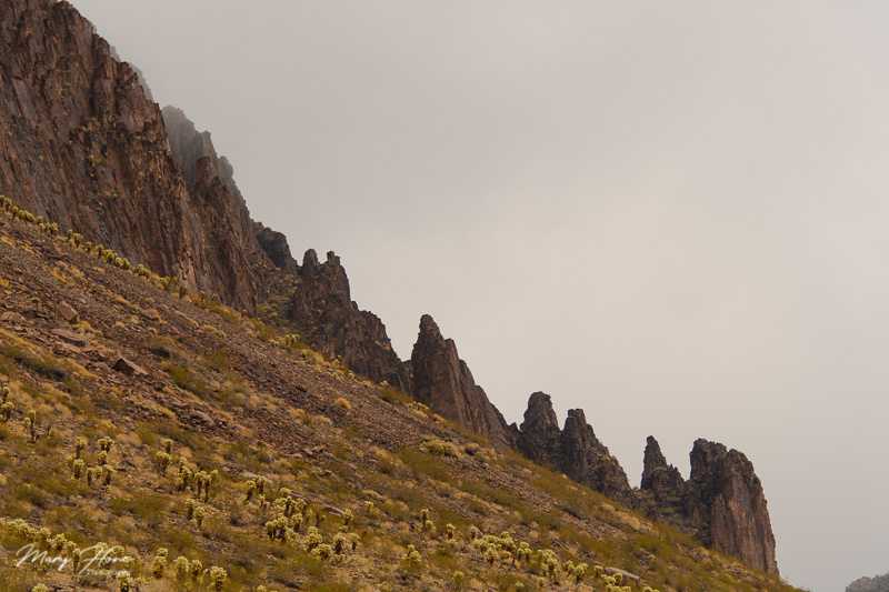 jagged mountains in the desert
